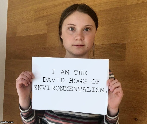 Merely a tool of grown-ups with a political agenda. | I AM THE  DAVID HOGG OF ENVIRONMENTALISM. | image tagged in greta,david hogg,environment,greta thunberg | made w/ Imgflip meme maker