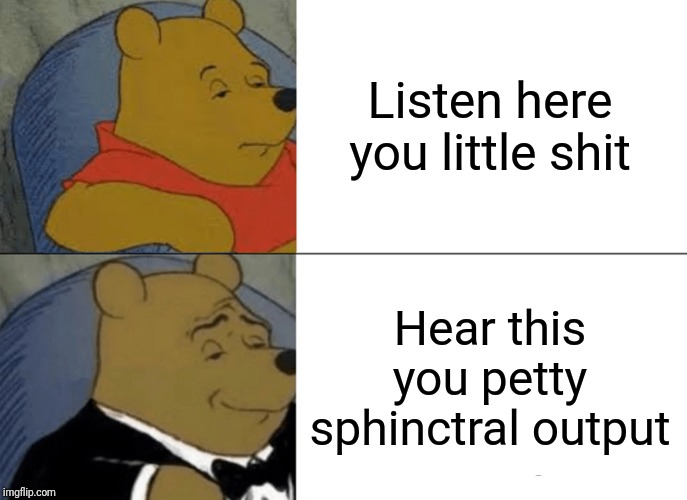 Tuxedo Winnie The Pooh Meme | Listen here you little shit Hear this you petty sphinctral output | image tagged in memes,tuxedo winnie the pooh | made w/ Imgflip meme maker
