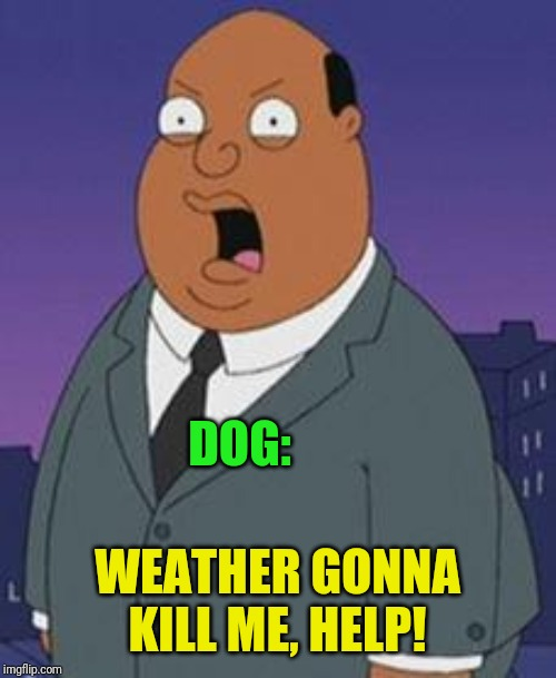 Family guy weatherman | DOG: WEATHER GONNA KILL ME, HELP! | image tagged in family guy weatherman | made w/ Imgflip meme maker