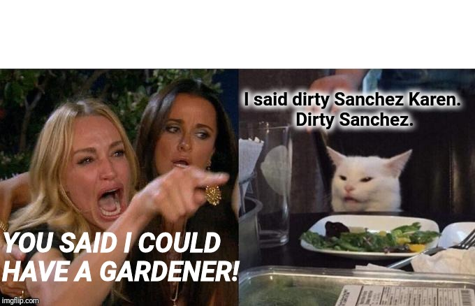 Woman Yelling At Cat Meme | YOU SAID I COULD  HAVE A GARDENER! I said dirty Sanchez Karen.  Dirty Sanchez. | image tagged in memes,woman yelling at cat | made w/ Imgflip meme maker