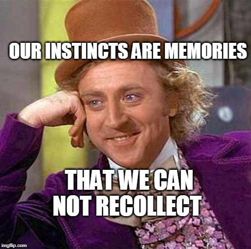 Creepy Condescending Wonka Meme | OUR INSTINCTS ARE MEMORIES THAT WE CAN NOT RECOLLECT | image tagged in memes,creepy condescending wonka | made w/ Imgflip meme maker