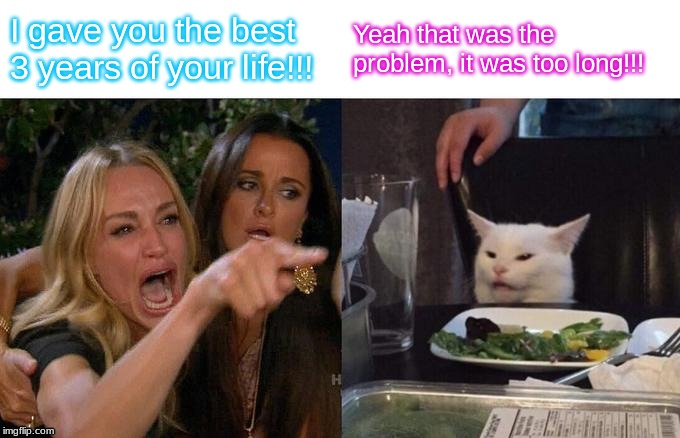 Woman Yelling At Cat Meme | I gave you the best 3 years of your life!!! Yeah that was the problem, it was too long!!! | image tagged in memes,woman yelling at cat | made w/ Imgflip meme maker