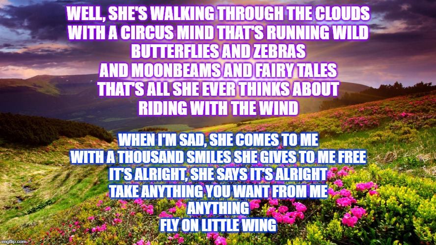Field of Flowers | WELL, SHE'S WALKING THROUGH THE CLOUDS WITH A CIRCUS MIND THAT'S RUNNING WILD BUTTERFLIES AND ZEBRAS AND MOONBEAMS AND FAIRY TALES THAT'S AL | image tagged in field of flowers | made w/ Imgflip meme maker