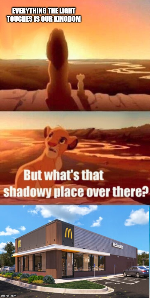 mmm | EVERYTHING THE LIGHT TOUCHES IS OUR KINGDOM | image tagged in memes,simba shadowy place | made w/ Imgflip meme maker