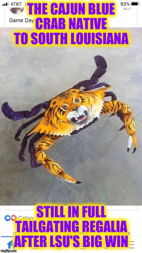 Geaux Tigers! | THE CAJUN BLUE CRAB NATIVE TO SOUTH LOUISIANA STILL IN FULL TAILGATING REGALIA AFTER LSU'S BIG WIN | image tagged in vince vance,lsu,joe burrow,clemson,national championship,joe burreaux | made w/ Imgflip meme maker