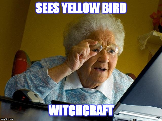 Grandma Finds The Internet Meme | SEES YELLOW BIRD WITCHCRAFT | image tagged in memes,grandma finds the internet | made w/ Imgflip meme maker