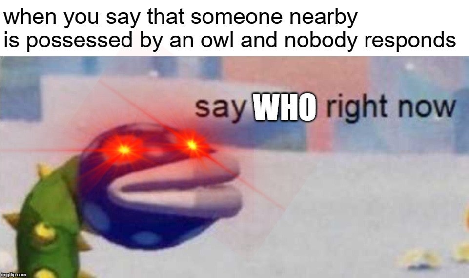 Say Sike Right Now | when you say that someone nearby is possessed by an owl and nobody responds WHO | image tagged in memes,say sike right now | made w/ Imgflip meme maker