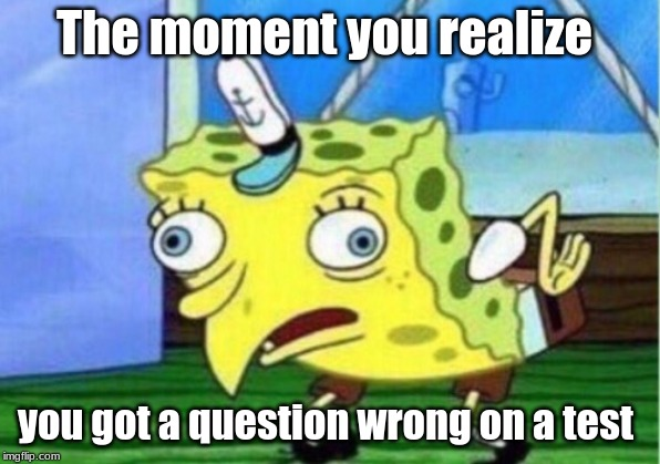 Mocking Spongebob Meme | The moment you realize you got a question wrong on a test | image tagged in memes,mocking spongebob | made w/ Imgflip meme maker