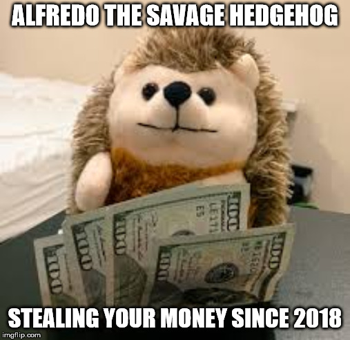 Alfredo the Hedgehog | ALFREDO THE SAVAGE HEDGEHOG STEALING YOUR MONEY SINCE 2018 | image tagged in the savage hedgehog | made w/ Imgflip meme maker
