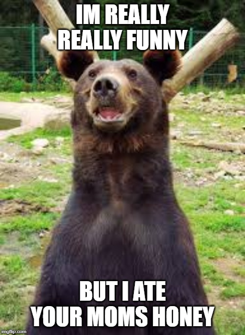 funny bear | IM REALLY REALLY FUNNY BUT I ATE YOUR MOMS HONEY | image tagged in funny | made w/ Imgflip meme maker