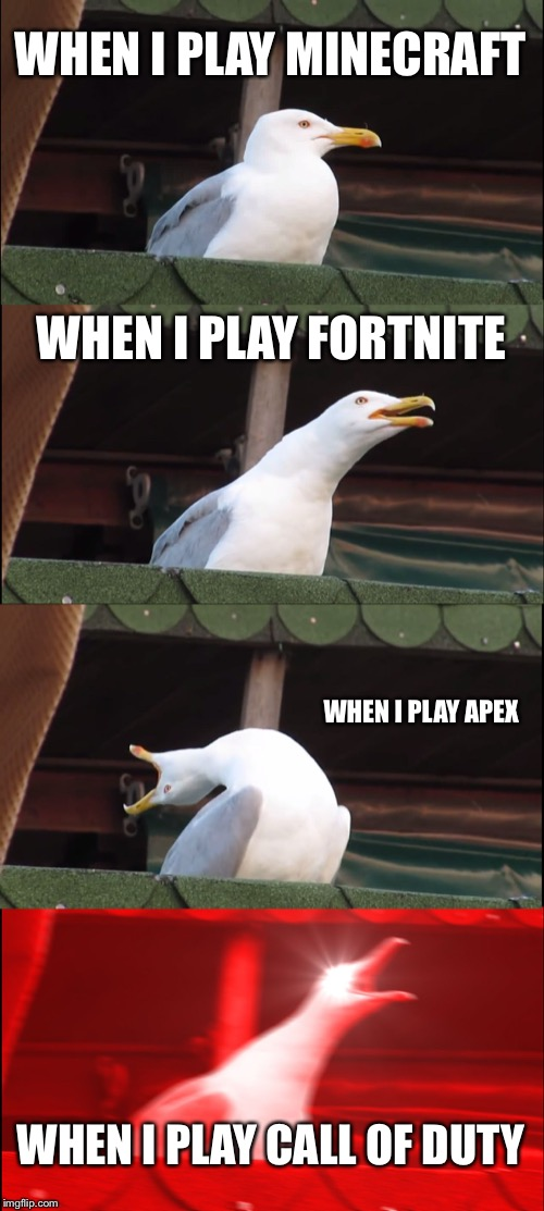 Inhaling Seagull Meme | WHEN I PLAY MINECRAFT WHEN I PLAY FORTNITE WHEN I PLAY APEX WHEN I PLAY CALL OF DUTY | image tagged in memes,inhaling seagull | made w/ Imgflip meme maker