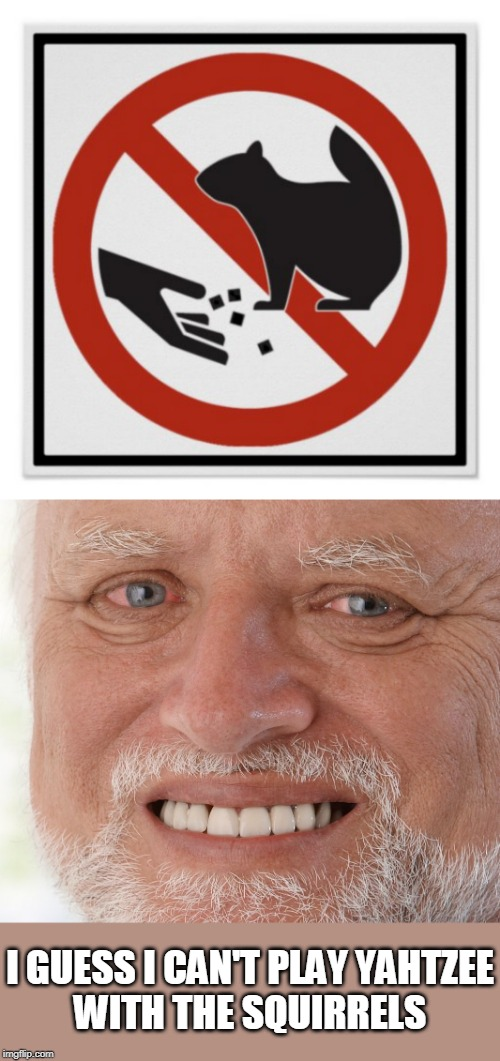 I GUESS I CAN'T PLAY YAHTZEE WITH THE SQUIRRELS | image tagged in hide the pain harold,memes,squirrel,stupid signs,yahtzee | made w/ Imgflip meme maker