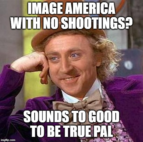 Creepy Condescending Wonka Meme | IMAGE AMERICA WITH NO SHOOTINGS? SOUNDS TO GOOD TO BE TRUE PAL | image tagged in memes,creepy condescending wonka | made w/ Imgflip meme maker