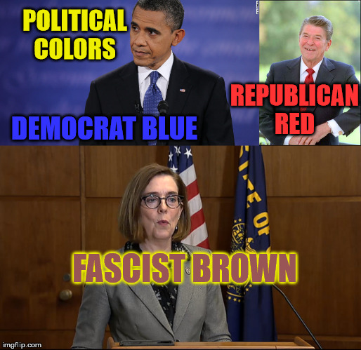 Political Colors | POLITICAL COLORS DEMOCRAT BLUE REPUBLICAN RED FASCIST BROWN | image tagged in barack obama,ronald reagan,kate brown | made w/ Imgflip meme maker
