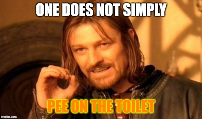 One Does Not Simply Meme | ONE DOES NOT SIMPLY PEE ON THE TOILET | image tagged in memes,one does not simply | made w/ Imgflip meme maker