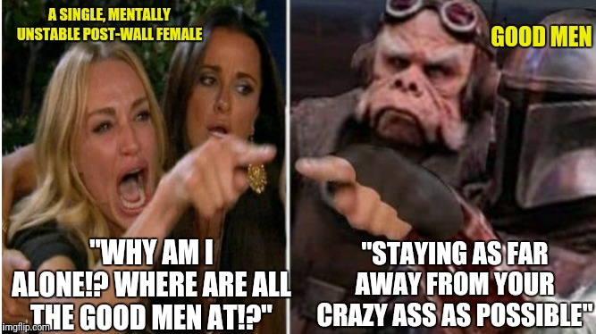"The Mandalorian knows how to handle a feminist. | A SINGLE, MENTALLY UNSTABLE POST-WALL FEMALE ""WHY AM I ALONE!? WHERE ARE ALL THE GOOD MEN AT!?"" ""STAYING AS FAR AWAY FROM YOUR CRAZY ASS AS  