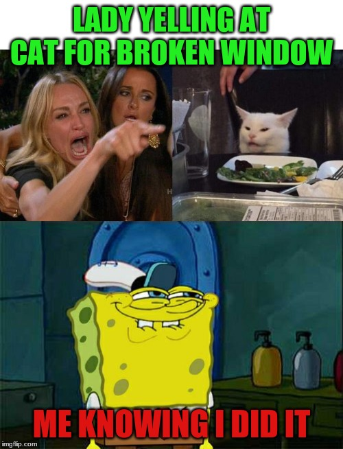 LADY YELLING AT CAT FOR BROKEN WINDOW ME KNOWING I DID IT | image tagged in memes,dont you squidward,woman yelling at cat | made w/ Imgflip meme maker