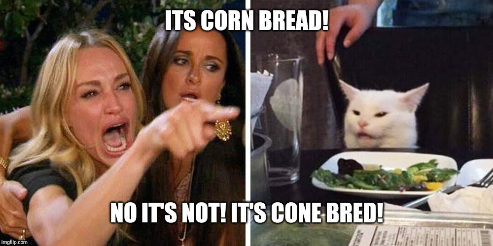 Smudge the cat | ITS CORN BREAD! NO IT'S NOT! IT'S CONE BRED! | image tagged in smudge the cat | made w/ Imgflip meme maker