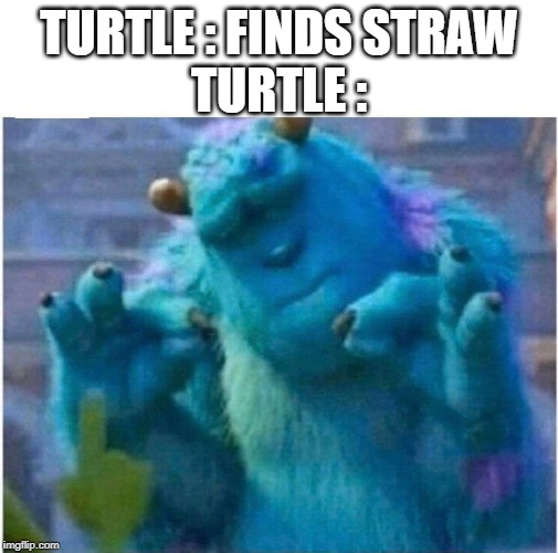 Pleased Sulley | TURTLE : FINDS STRAWTURTLE : | image tagged in pleased sulley | made w/ Imgflip meme maker