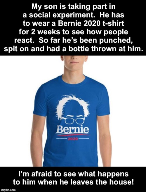 Either you love him or hate him | image tagged in bernie sanders | made w/ Imgflip meme maker