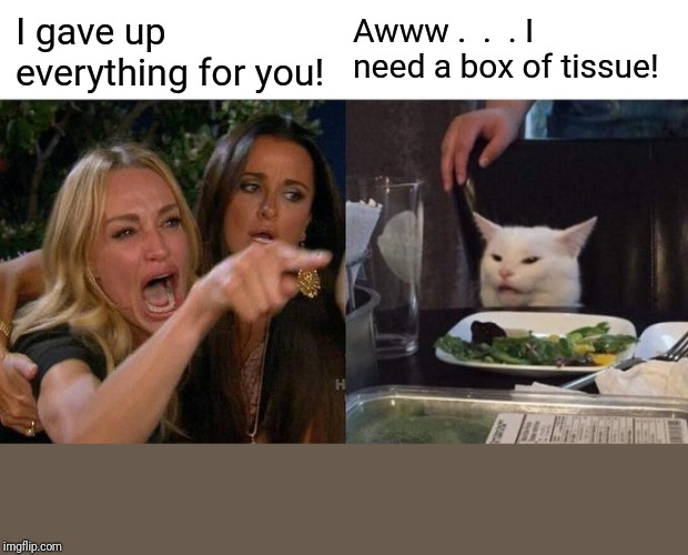 Woman Yelling At Cat Meme | I gave up everything for you! Awww .  .  . I need a box of tissue! | image tagged in memes,woman yelling at cat | made w/ Imgflip meme maker