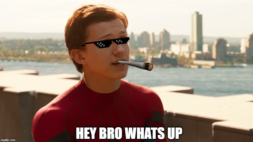 Tom Holland Spider-Man  | HEY BRO WHATS UP | image tagged in tom holland spider-man | made w/ Imgflip meme maker
