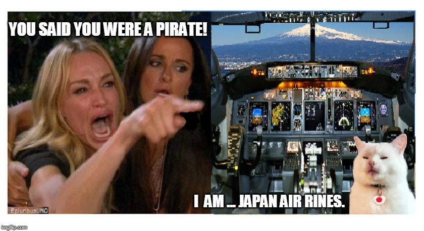 STOP Yerring! | YOU SAID YOU WERE A PIRATE! I  AM ... JAPAN AIR RINES. | image tagged in meanwhile in japan,japan,smudge the cat,lady yelling at cat | made w/ Imgflip meme maker