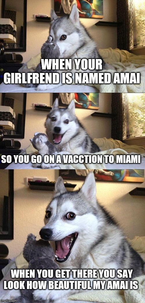 Bad Pun Dog Meme | WHEN YOUR GIRLFREND IS NAMED AMAI SO YOU GO ON A VACCTION TO MIAMI WHEN YOU GET THERE YOU SAY LOOK HOW BEAUTIFUL MY AMAI IS | image tagged in memes,bad pun dog | made w/ Imgflip meme maker