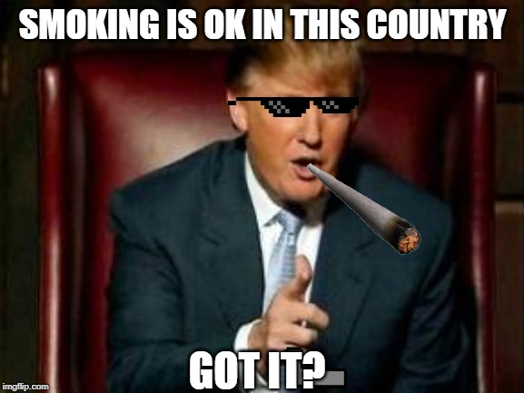 Donald Trump | SMOKING IS OK IN THIS COUNTRY GOT IT? | image tagged in donald trump | made w/ Imgflip meme maker