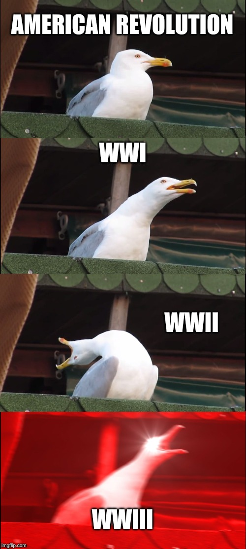 Inhaling Seagull |  AMERICAN REVOLUTION; WWI; WWII; WWIII | image tagged in memes,inhaling seagull | made w/ Imgflip meme maker