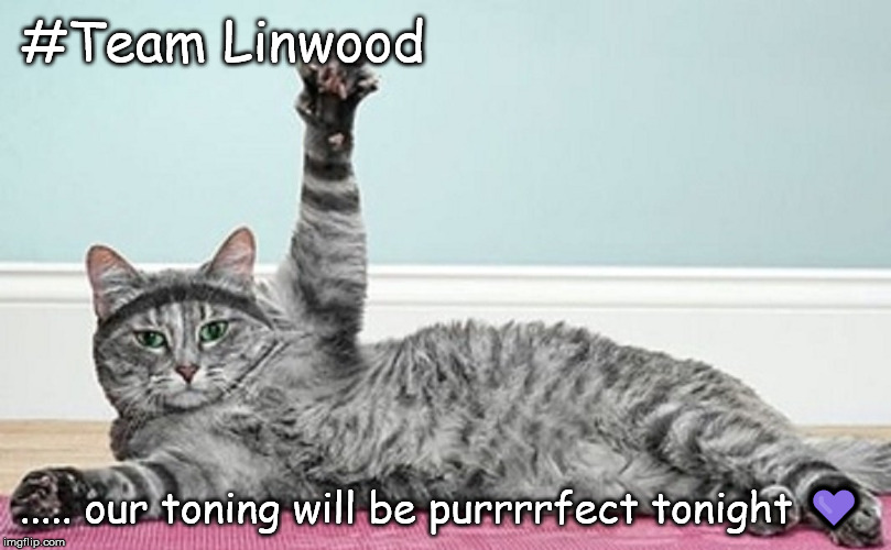 Its going to be purrrrfect! |  #Team Linwood; ..... our toning will be purrrrfect tonight 💜 | image tagged in cat,highland,hustle | made w/ Imgflip meme maker