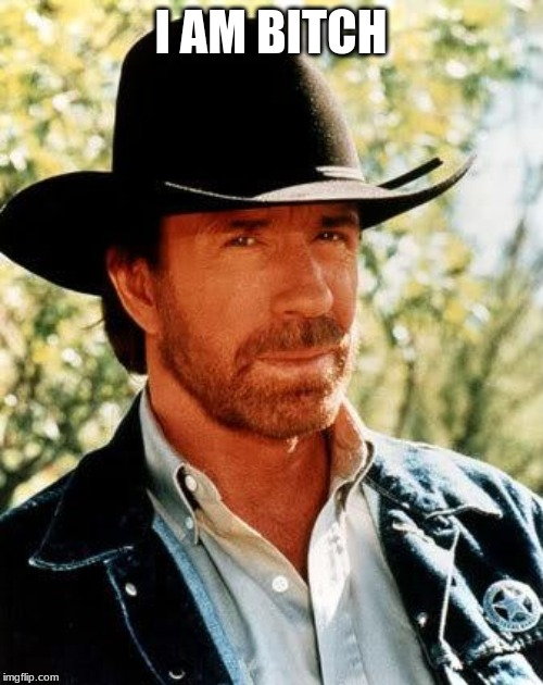 Chuck Norris Meme | I AM B**CH | image tagged in memes,chuck norris | made w/ Imgflip meme maker
