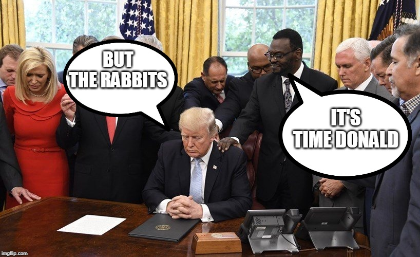 Officially Impeached, It's Time to let go of thine Hatred, The Corruption shall soon be cleansed By Way Of The Senate | IT'S TIME DONALD BUT THE RABBITS | image tagged in america | made w/ Imgflip meme maker