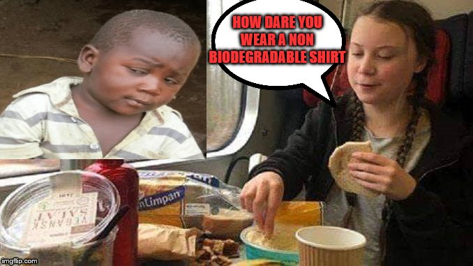 greta on train |  HOW DARE YOU WEAR A NON BIODEGRADABLE SHIRT | image tagged in third world skeptical kid,greta thunberg how dare you | made w/ Imgflip meme maker