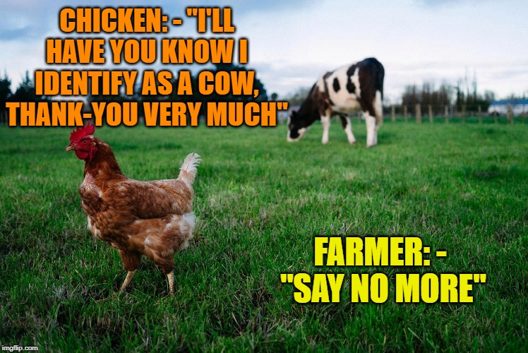 "CHICKEN: - ""I'LL HAVE YOU KNOW I IDENTIFY AS A COW, THANK-YOU VERY MUCH"" FARMER: -  ""SAY NO MORE"" 