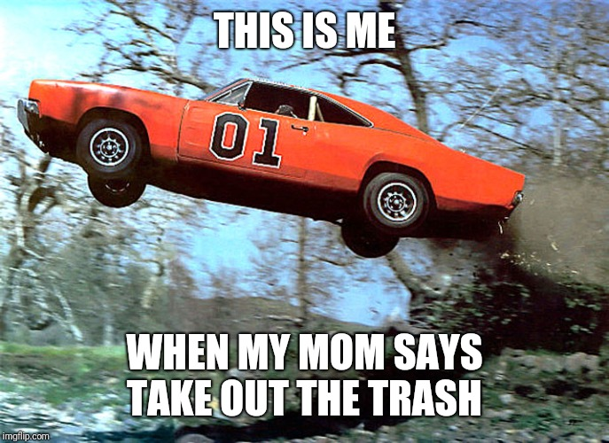 THIS IS ME; WHEN MY MOM SAYS TAKE OUT THE TRASH | image tagged in general lee | made w/ Imgflip meme maker