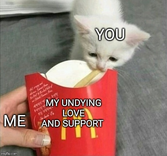 All for you |  YOU; MY UNDYING LOVE AND SUPPORT; ME | image tagged in kitty,cats,french fries,sad cat | made w/ Imgflip meme maker