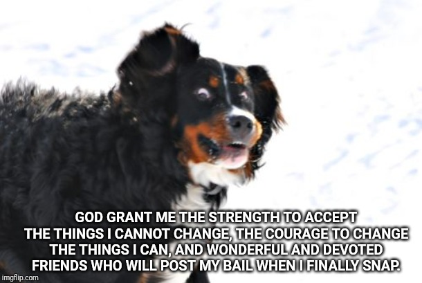Crazy Dawg Meme |  GOD GRANT ME THE STRENGTH TO ACCEPT THE THINGS I CANNOT CHANGE, THE COURAGE TO CHANGE THE THINGS I CAN, AND WONDERFUL AND DEVOTED FRIENDS WHO WILL POST MY BAIL WHEN I FINALLY SNAP. | image tagged in memes,crazy dawg | made w/ Imgflip meme maker