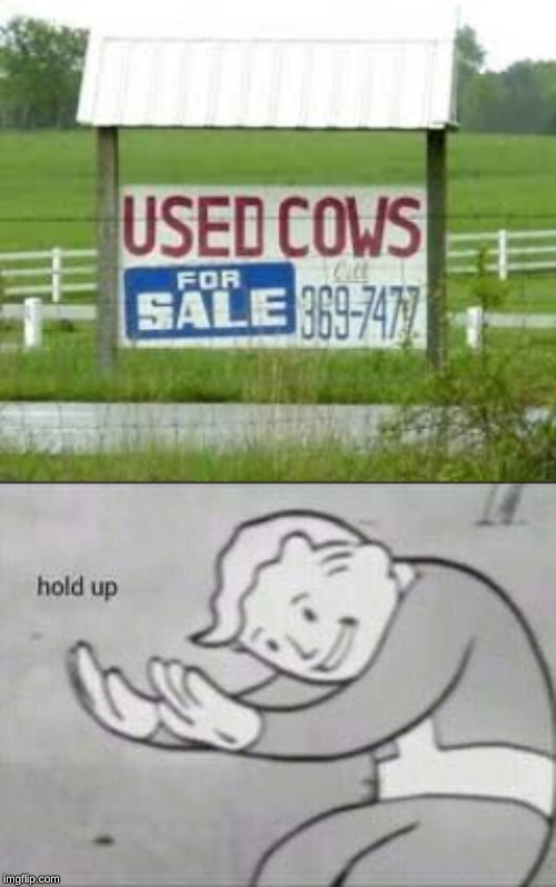 image tagged in fallout hold up,memes,cows,used,sale | made w/ Imgflip meme maker