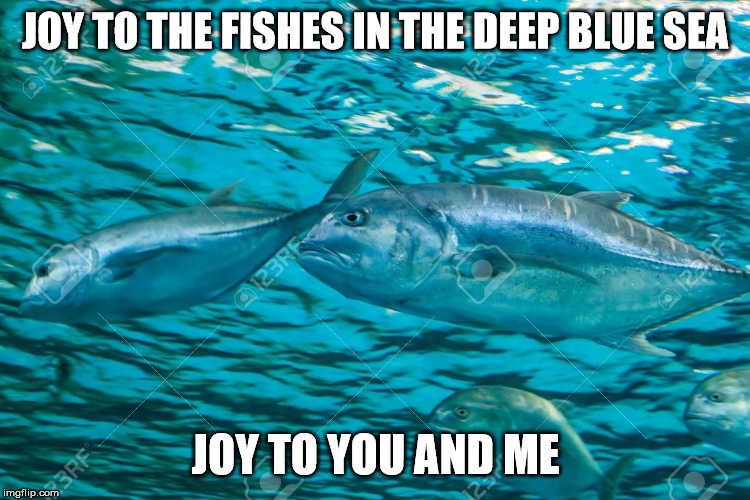 joy to the fishes in the deep blue sea | JOY TO THE FISHES IN THE DEEP BLUE SEA JOY TO YOU AND ME | image tagged in joy to the fishes in the deep blue sea | made w/ Imgflip meme maker