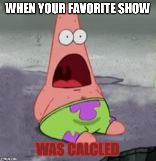 Suprised Patrick | WHEN YOUR FAVORITE SHOW WAS CALCLED | image tagged in suprised patrick | made w/ Imgflip meme maker