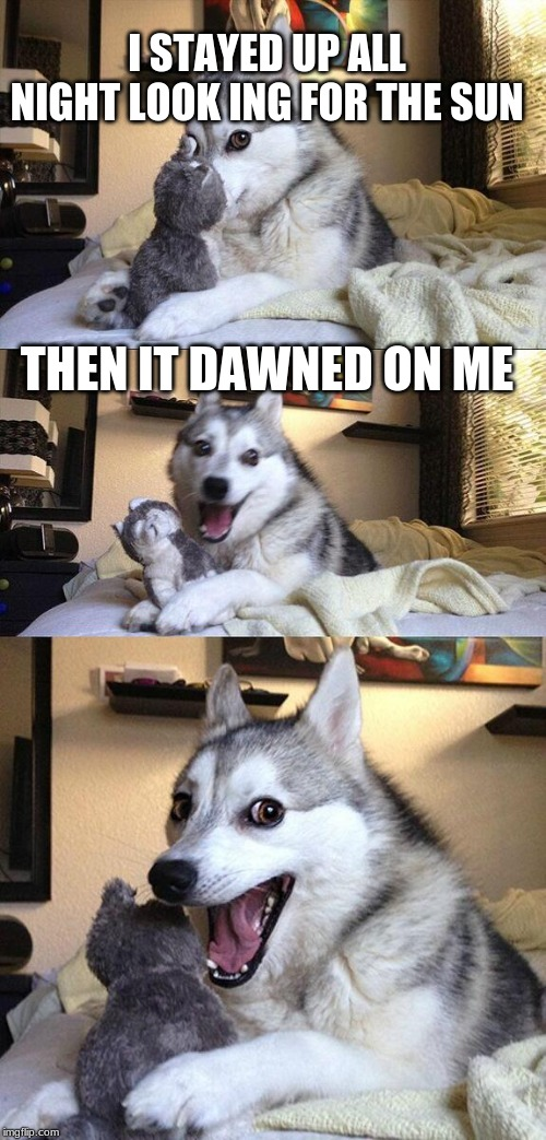 Bad Pun Dog Meme | I STAYED UP ALL NIGHT LOOK ING FOR THE SUN THEN IT DAWNED ON ME | image tagged in memes,bad pun dog | made w/ Imgflip meme maker