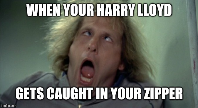 Scary Harry |  WHEN YOUR HARRY LLOYD; GETS CAUGHT IN YOUR ZIPPER | image tagged in memes,scary harry | made w/ Imgflip meme maker