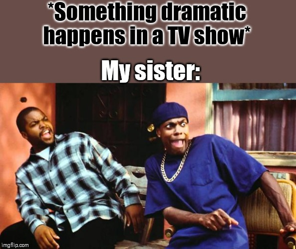 Ice Cube Damn |  *Something dramatic happens in a TV show*; My sister: | image tagged in ice cube damn | made w/ Imgflip meme maker
