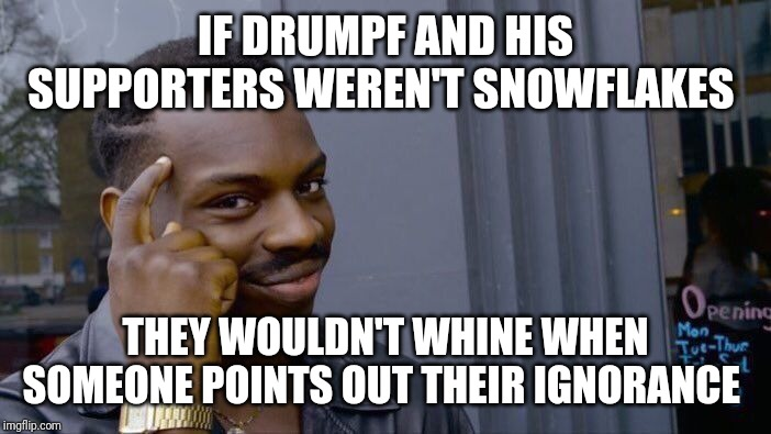 Roll Safe Think About It | IF DRUMPF AND HIS SUPPORTERS WEREN'T SNOWFLAKES THEY WOULDN'T WHINE WHEN SOMEONE POINTS OUT THEIR IGNORANCE | image tagged in memes,roll safe think about it | made w/ Imgflip meme maker