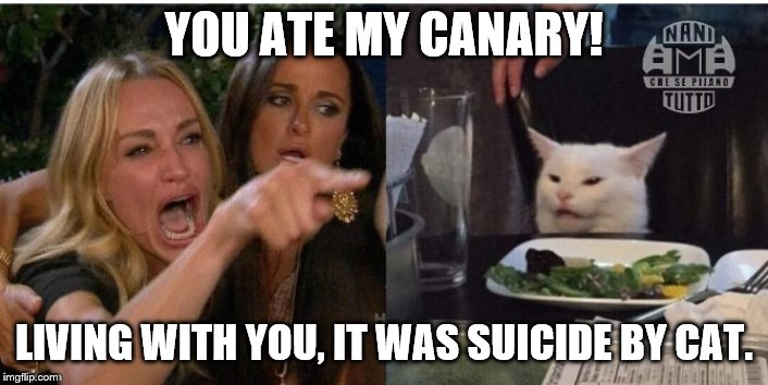 white cat table |  YOU ATE MY CANARY! LIVING WITH YOU, IT WAS SUICIDE BY CAT. | image tagged in white cat table | made w/ Imgflip meme maker