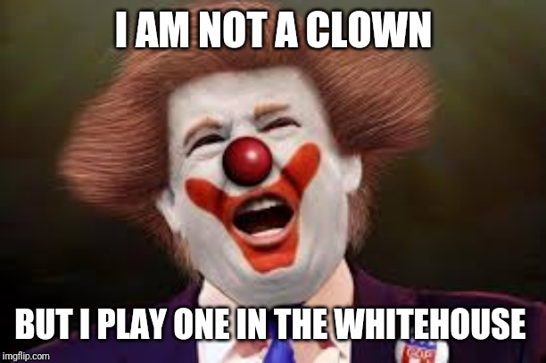 Trump clown | I AM NOT A CLOWN BUT I PLAY ONE IN THE WHITEHOUSE | image tagged in trump clown | made w/ Imgflip meme maker