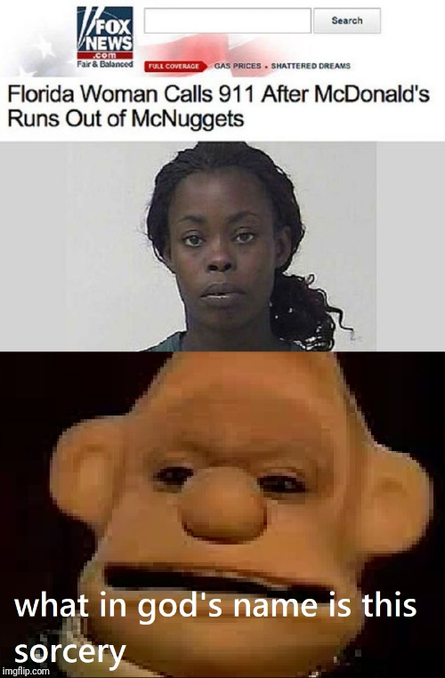 You don't have chicken nuggets? You get arrested! | image tagged in fox news,memes,funny,stupid humor,wallace and gromit | made w/ Imgflip meme maker