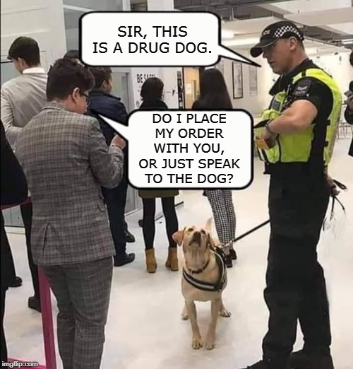 Sir, this is a drug dog. |  SIR, THIS IS A DRUG DOG. DO I PLACE MY ORDER WITH YOU, OR JUST SPEAK TO THE DOG? | image tagged in sir this is a drug dog,memes,dogs,drugs,drug dealer,police | made w/ Imgflip meme maker