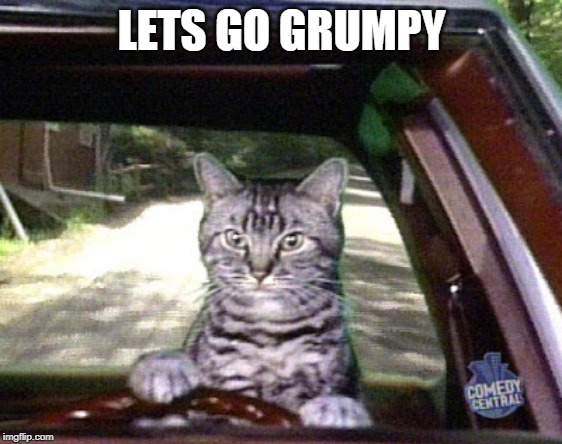 Toonsis the cat that could drive | LETS GO GRUMPY | image tagged in toonsis the cat that could drive | made w/ Imgflip meme maker